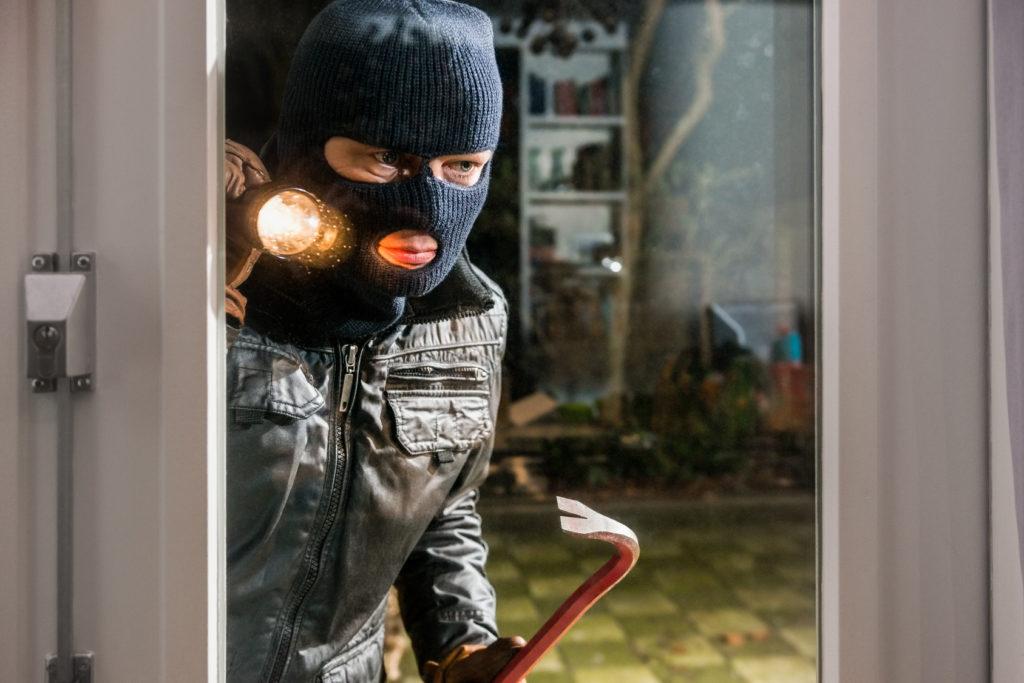burglar deterrent